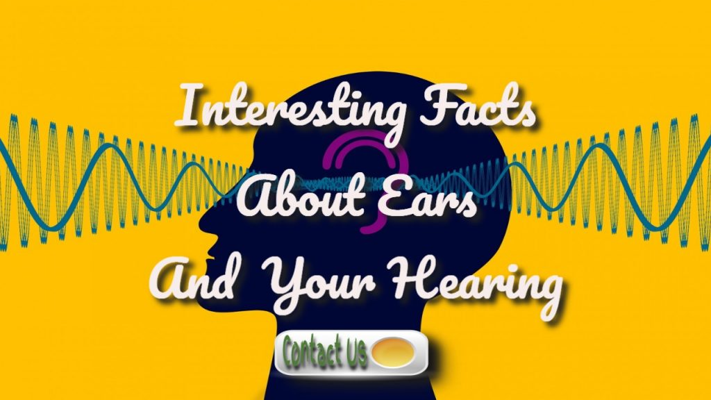 What Are Ears? What Do They Do? How Can I Keep My Ears Healthy?